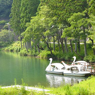 ため池(井堀) サイクルボート
