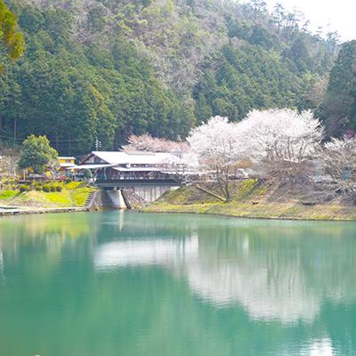 ため池(井堀) 2