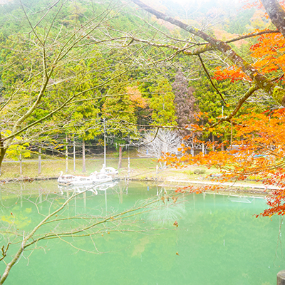 ため池(井堀) 3